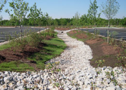 Bioswale at Sixteen Mile Creek Sports Complex in Oakville
