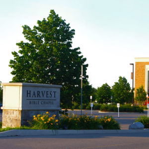 Yellow lilies planted around the base of the Harvest Bible Chapel entrance sign