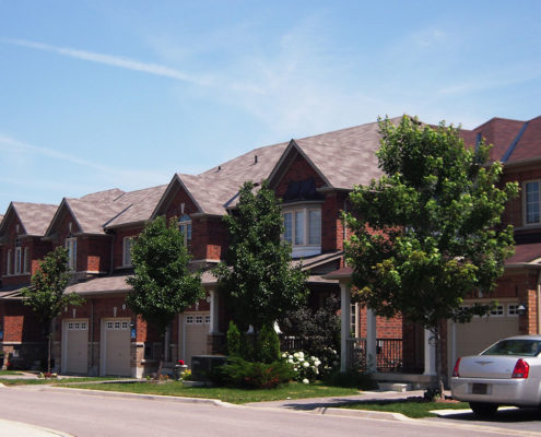 Small trees evenly spaced in the yards of each town house at Harvest Bramalea