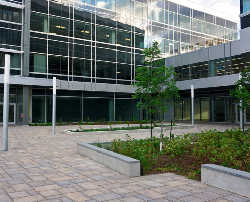 small retaining walls are uses to define the garden and paving at entrance to building