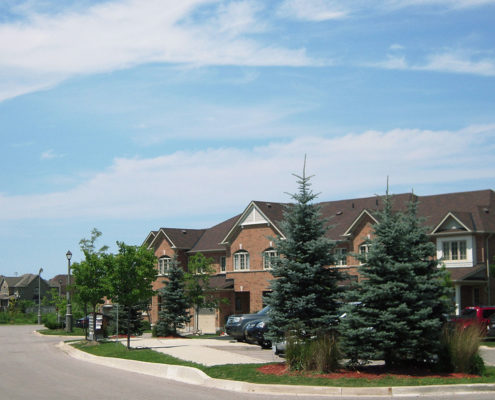 Small spruce trees along the curb of the road offer shelter to the homes from the road