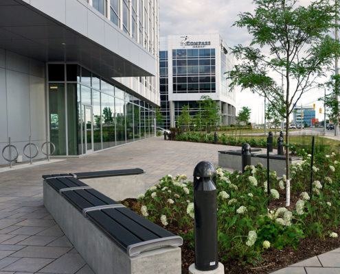 Benches and short light posts surround the garden with native plant species