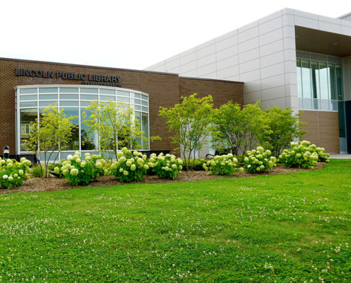 Small flowering trees and shrubs in a mulched flower bed our front of the Lincoln Public Library
