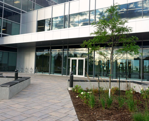 benches and a small planter add definition to the pathway to the building entrance