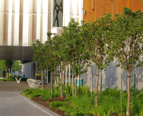 Small trees and ornamental grass line the outer wall adjacent to the front entrance