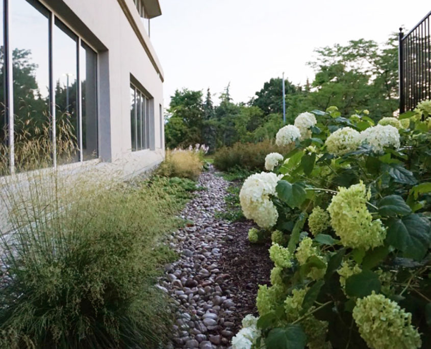 Small shrubs and ornamental grasses line the outside of the lower level windows