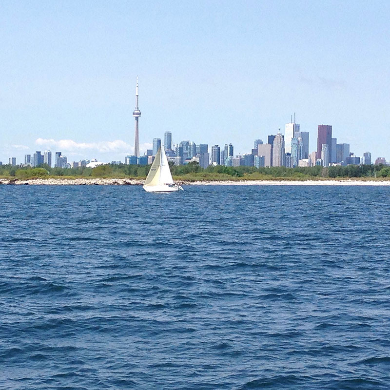 Toronto City skyline in the backgrond of the water and a passing sail boat