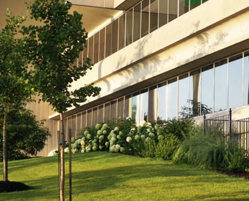 Small trees and shrubs make up the garden beds on the lawn in front of the office building at 101 McNabb