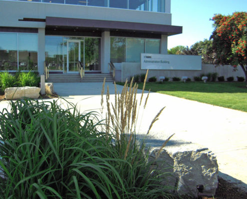 ornamental grass and armor stones in front of the concrete walkway leading to the doors of the administration building