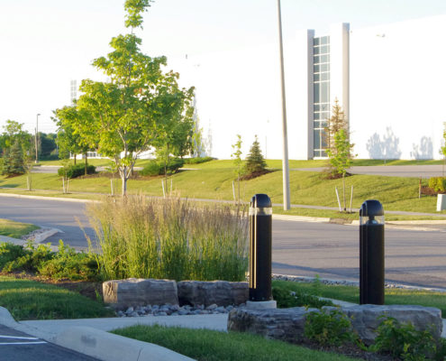 Ornamental grass and armor stones accenting walking path between the parking lot and the road