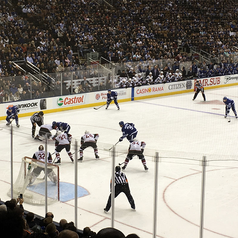 Staff attending a Leafs hockey game