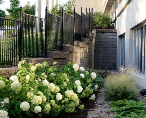 Small shrubs line the garden bed outside of the lower level windows of the office builidng