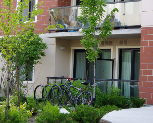 A bike rack blends in with the finishes of the building and the surrounding small shrubs and trees