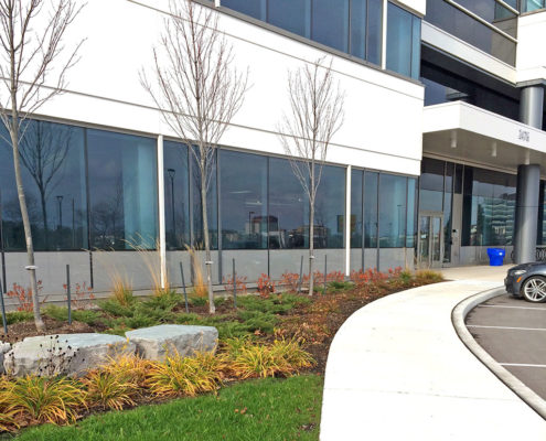 Small shrubs, plants and armor stone fill the mulch bed in front of the glass windows of FMC 3 building