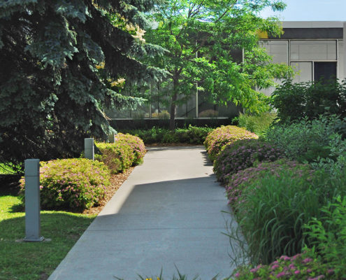 Concrete walkway lined with bushes and trees on the path to the entrance at RL Clark water filtration plant