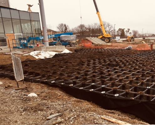 Soil cells being installed at Cooksville Go Station